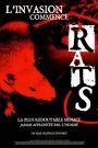 Rats, l'invasion commence