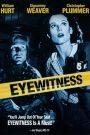 L'œil du témoin