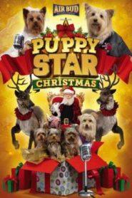 Puppy Star : c'est Noël
