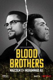 Frères de sang : Malcolm X et Mohamed Ali